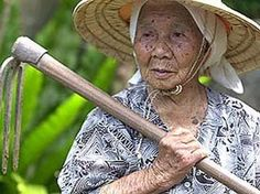 In the United States there are approximately 80,000 centenarians, or about 10-20 centenarians per 100,000 population.  In Okinawa, centenarian ratios may be the world's highest at approximately 50 per 100,000 population.