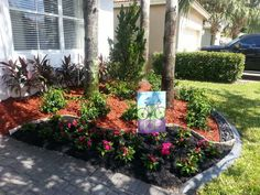 decorative shrubs for patio patio landscaping