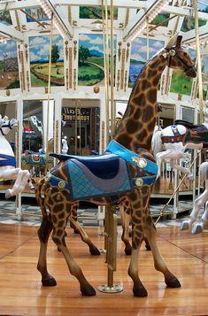 The 1895 Looff Carousel at Seaport Village...Looff Giraffe