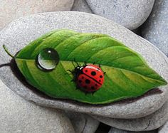 Painted stone ladybug on a leaf! Is Painted with high quality Acrylic paints and finished with Glossy varnish protection.