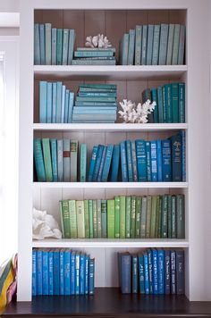 perfectly organized and color coded bookshelf