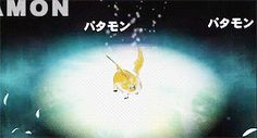 Patamon, Angemon, Digimon Adventure