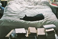 bed, books and black cats Kuroo Tetsurou, Ravenclaw, Cat Lady, Cute Cats, Funny Cats, Bean Bag Chair, Dog Cat, In This Moment, Cool Stuff