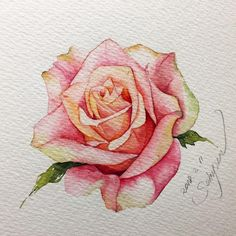 There is another craze is to draw patterns, flowers, mandala patterns in ink. Then you can even color them using color pencils. You can say this is like adult drawing at its best! Watercolor Rose, Watercolor Cards, Watercolour Painting, Watercolors, Plant Drawing, Rose Art, Watercolour Tutorials, Arte Floral, Botanical Prints