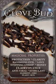 #clove #buds #herbal #botanical #spell #ingredients #wicca #white #witch #natural