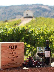 Quinta de Vila Maior: Grandes vinhos do Douro Superior - Portugal