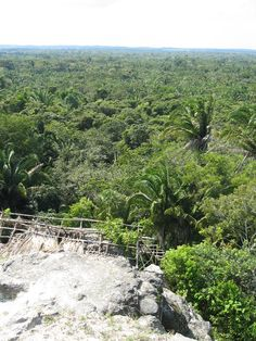 Lamanai Archaeological Reserve 106 km (66 mi & 2 hrs) northwest of Belize City via Orange Walk, Orange Walk, Belize