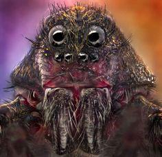 Incredible creatures up-close - Jorge Fardels/Solent News/REX