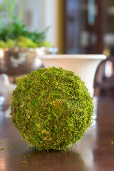 Confounded by trying to wrap a square sheet of moss around a round object? Me too! These moss balls are a great DIY craft idea for your Spring and Summer home decor. #diy #spring #summer #moss #mossballs #crafts #nourishandnestle