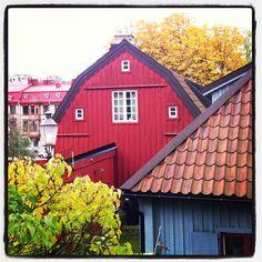 Kingdom Of Sweden, Scandinavian Countries, Helsingborg, Largest Countries, What A Wonderful World, Wonders Of The World, Finland, Denmark, Belgium