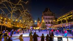 Natural History Museum ice rink. Photo: © Trustees of the Natural History Museum