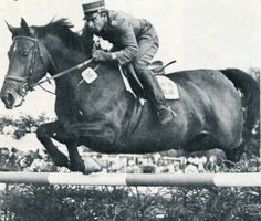 Paul Weier on Fink – winner of Grosser Preis von Aachen 1973  Paul Weier (born December 3, 1934 in Zürich) rode at four Olympic Games. The first time was in Rome 1960 on Centurion, then in Tokyo 1964 on Satan III and in Mexico City 1968 on Wildfeuer. He reached his best Olympic result in Munich 1972 onWulf when the Swiss team was placed fifth. Paul Weier was the first Swiss rider to win the Grosser Preis von Aachen when he won on Fink in 1973.