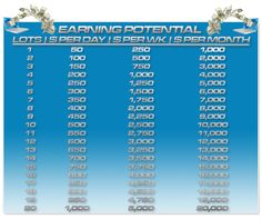5 Pips a Day Forex Robot | Automated Forex Trading System