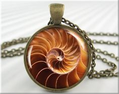 Seashell Pendant Charm Art Pendant Ocean Jewelry Beach Necklace Picture Pendant (091RB). $12.95, via Etsy.