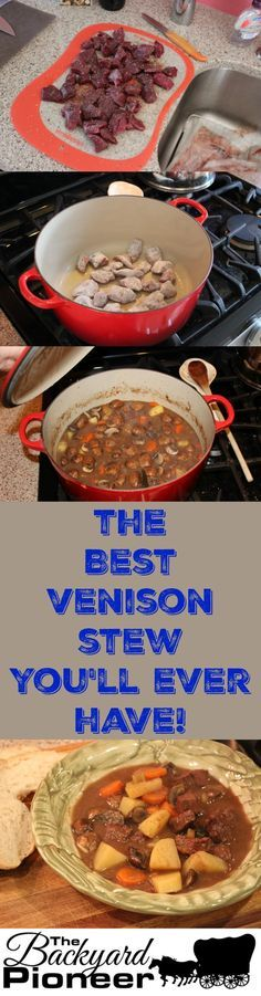 The Best Venison Stew You'll Ever Have! - The Backyard Pioneer Elk Recipes, Wild Game Recipes, Cooking Recipes, Sausage Recipes, Cooking Tips, Venison Stew, Cooking Venison, Venison Meals, Venison Burgers