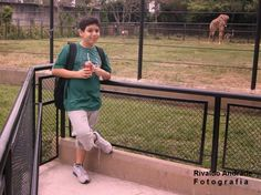 moments10: Zoológico - RJ