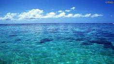 Resultat d'imatges de mar