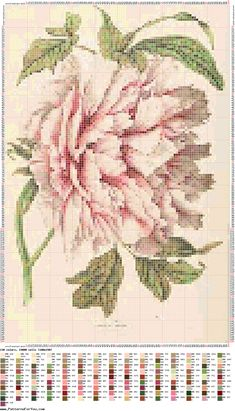 camelia-fleur-point de croix-cross stitch-embroidery