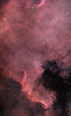 North America Nebula HaRGB | by Doug German BudgetAstro