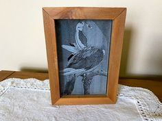 The perfect gift for the bird lovers. This etching can sit on the desk or can be hung on the wall , 3DWoodsandAcrylics Wall Hanger, Hangers, Den Decor, Rustic Home Interiors, Great Gifts For Mom, Rustic Farmhouse Decor, Hanging Signs, Acrylic Art, Box Design