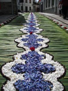 Castropol, alfombras florales