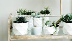 DIY: Lav din egen urtepotteskjuler | Femina