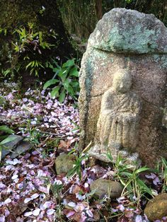 Sanaru Lake, Hamamatsu-city, Japan.  道祖神のお花見
