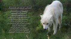 wolfs | Code Wolves Fresh New HD Wallpaper Best Quality | HD Wallpaper ...