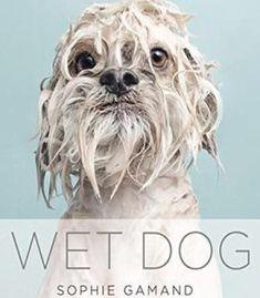Wet Dog PDF