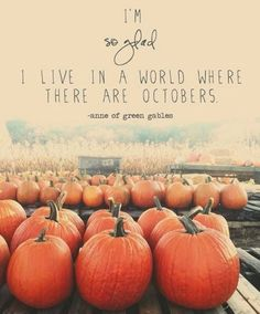 A World where there are Octbers. quote autumn movie fall halloween pumpkins patch anne of green gables Hello October, Happy October, October Fall, Happy Fall, October Country, Happy Friday, Image Deco, Paper Bowls, Autumn Scenery