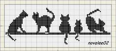 gatos_preos_barra.jpg (800×350)