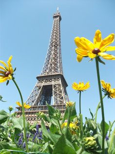 Paris, France, I saw the Eiffel Tower before I was 20 years old!