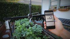 Farmbot Genesis, el primer proyecto Hardware Libre para la automatización de la agricultura ecológica doméstica