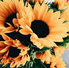 Pretty sunflowers at the farmers market. Bouquet of sunflowers at the flower market. Sunflowers And Daisies, Wild Flowers, Beautiful Flowers, Sun Flowers, Fresh Flowers, Sunflower Wallpaper, Plants Are Friends, No Rain, Mellow Yellow