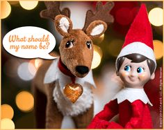 THE ELF ON THE SHELF~ Elf Pets™ Reindeer | Elf on the Shelf Names