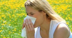 The 5 Best Essential Oils For Allergy Relief | Off The Grid News