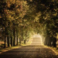 #Warmia It looks like a tunnel of light