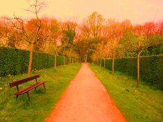 Bewerkte foto gemaakt in het Vrijbroekpark in Mechelen