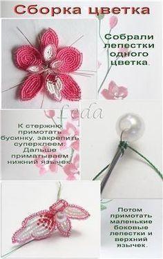 http://cs412320.vk.me/v412320427/f0c/BgFDO4YBSGw.jpg