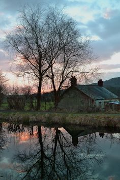 Reflections at sunset - Clyne, Wales Copyright: Thomas Cole