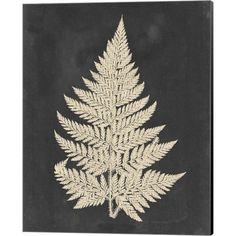 Vision Studio 'Linen Fern I' Canvas Art, Black Canvas Artwork, Canvas Prints, Art Prints, Best Canvas, Wassily Kandinsky, Gustav Klimt, Claude Monet, Botanical Art, Jurassic World