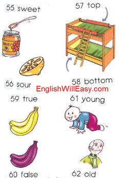 sweet, sour top, bottom true,, false young, old