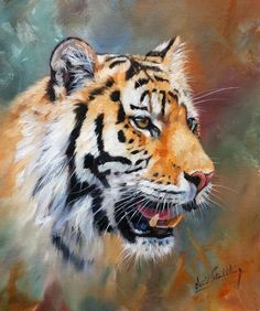 TIGER Superb New DAVID STRIBBLING Oil Painting #Realism