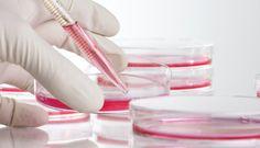 #DiponEd Institute of Regenerative Medicine Programme FREE #DIPLOMA