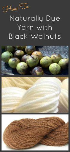Natural Dyeing Series - how to dye fabric or yarn with Black Walnuts. A free FiberArtsy.com Tutorial