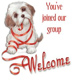 The perfect Welcome Dog Animated GIF for your conversation. Discover and Share the best GIFs on Tenor. Yorkshire Terrier, Shih Tzu, Image Facebook, Welcome Images, Welcome To The Group, Good Morning Gif, Morning Greeting, Pet Birds, Animated Gif