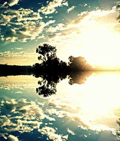 Light; Reflection- the sky and the trees are reflected onto the water creating a mirror-like image.