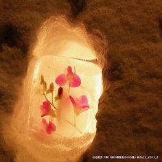 """「街かど_vol.2」_小樽市 「第15回小樽雪あかりの路」2013年2月 ❄️❄️❄️ 小樽の街を歩いていると、雪壁に氷で作った押し花を発見✨ローソクの炎に照らされたかわいい演出💕2013年に散策したアルバムより。 ⛄️*⛄️*⛄️ """"Townscape _vol.2"""" _ Otaru City """"The15th Otaru snow light path"""" February 2013 ❄️❄️❄️ While walking in the city of Otaru, I found pressed flowers made of ice on the snow wall. It"""