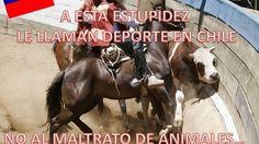 Detener el Rodeo en Chile