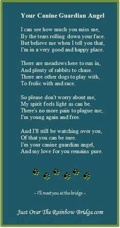 """💙💙 miss you Harley 💙💙 Your Canine Guardian Angel - . Designed to promote healing & provide comfort, our site includes a visitor's area built around the sentiment """"I wish Rainbow Bridge had visiting hours. Dog Quotes, Animal Quotes, Animal Poems, Qoutes, Cowboy Quotes, Yorkshire Terrier, Boston Terrier, I Love Dogs, Puppy Love"""